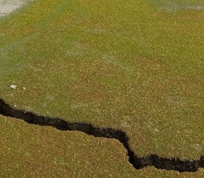 earthquake-cracks