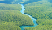 Amazon-River-Aerial-View
