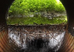 Culvert Science AQ2